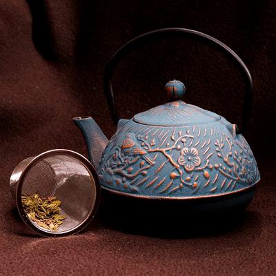 bule-de-ferro-2
